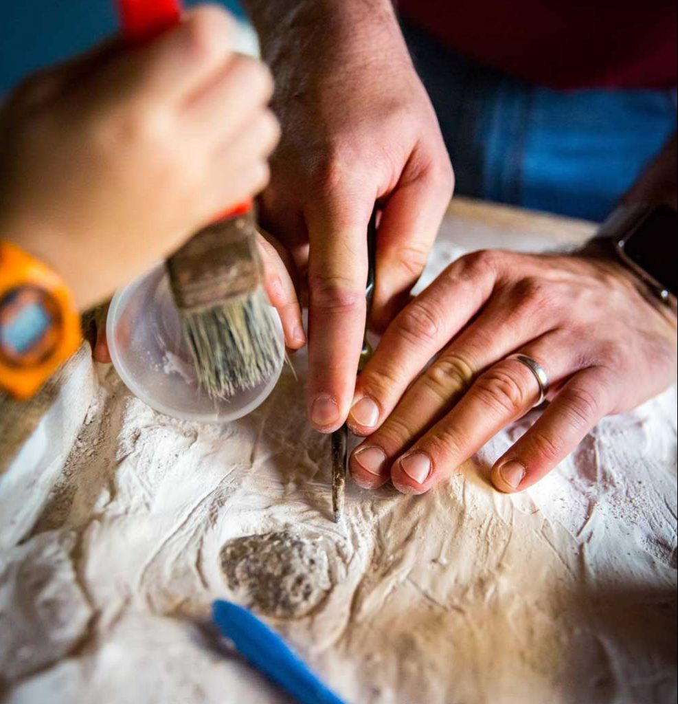 scavo-paleontologico-luccabimbi