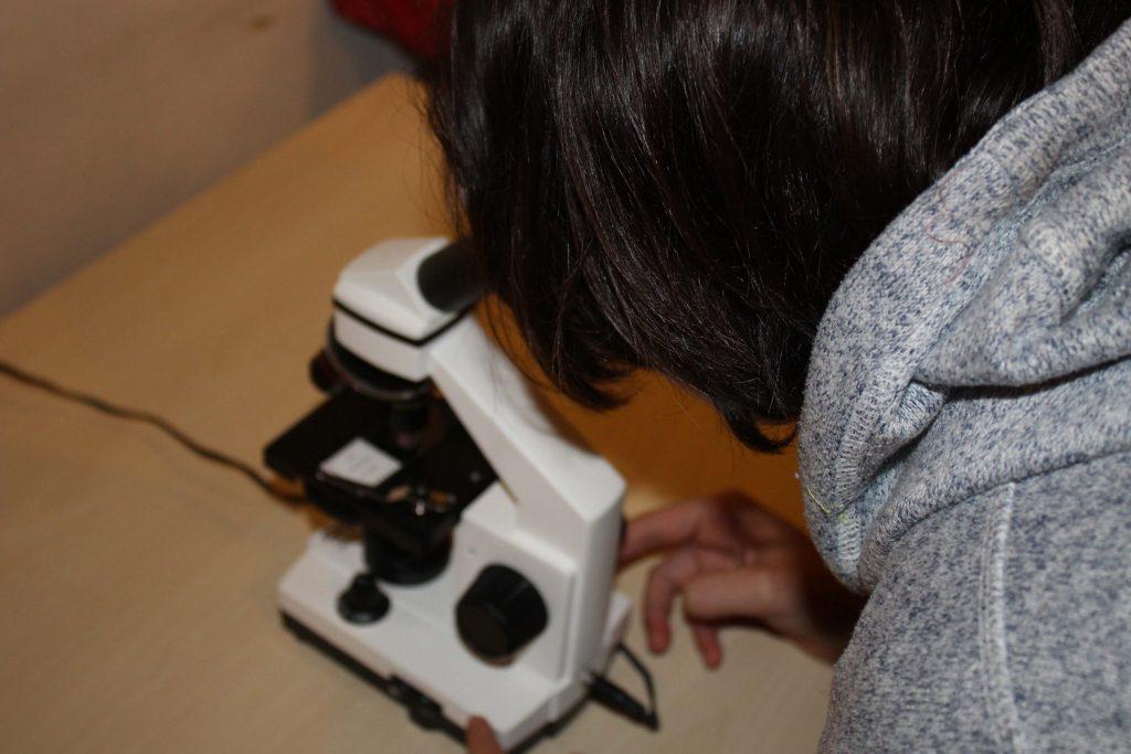 Chimica e Geologia