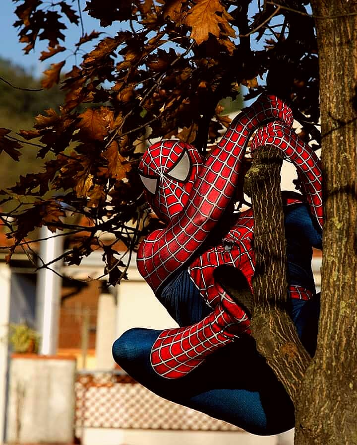 spiderman a Lucca Bimbi